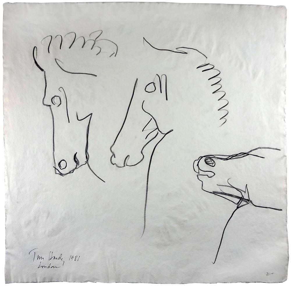 Tom_Hardy_Horses